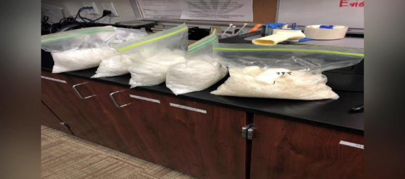 Dino the K-9 helps to find $63K worth of meth in drug bust