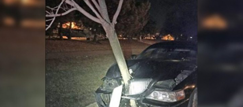WOMAN CHARGED WITH DUI AFTER CARRYING 15-FOOT TREE THAT WAS STUCK IN HER GRILLE